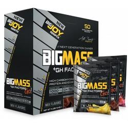 BIGJOY SPORTS - Bigjoy Sports BigMassGo GH Factors Gainer 50 Servis 5000 gr Mix Aroma