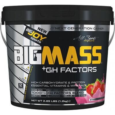 Bigjoy Bigmass Gainer + GH FACTORS Çilek 1200 gr