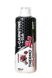ProTouch - Protouch BigBang Thermo 3.0 L-Carnitine+CLA 1000 ml